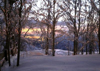 NIEVE Arboles y Atardecer con nieve