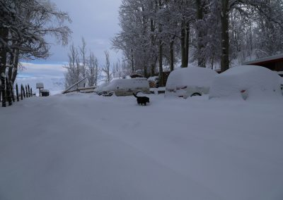 NIEVE Automoviles cubiertos Nieve 02